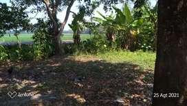 Jual Tanah di Jatisari