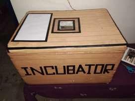 Incubator ...সহজেই যিকোনো চৰাইৰ কণী ৰ পোৱালি উলিয়াব পাৰিব
