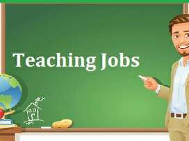 Teachers requirements for various post for school