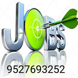 Just ad posting and Telecalling online works ..
