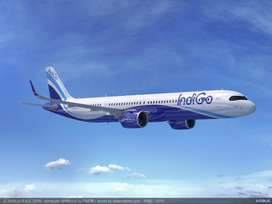 Urgent hiring ground staff indigo airlines