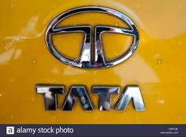 OFFICE WORK VACANCY IN TATA MOTOR COMPANY grab tata motor job now  All