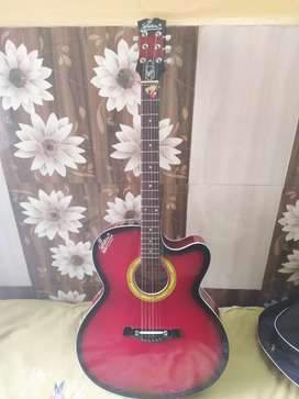 Signature electro acoustic brand new