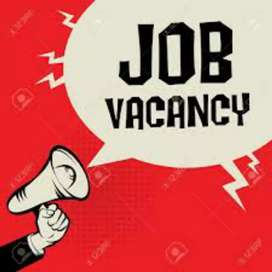 2019 male and female airport job vacancy