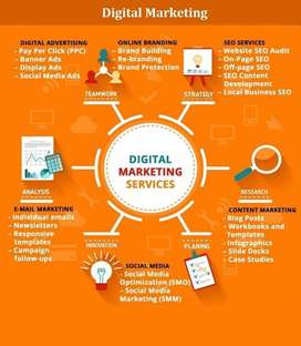 Digital Marketing Professional (SEO, SEM and PPC)