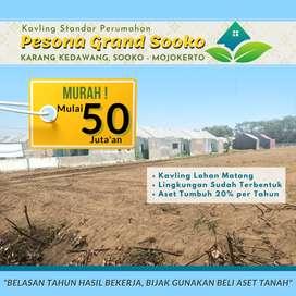 Dapatkan Lahan Murah Pesona Green Sooko Mojokerto Harga 800 Ribu