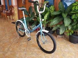 Sepeda Mini, Minitrek, Minion Bike