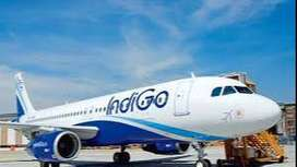 BOOM;; Bumper Hiring for Ground Staff in Indigo Airlines - Airport Job