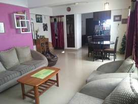2 BHK Fully Furnished Apartment available from 1st Nov @ Hosa Road