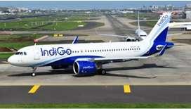 Ground staff job for airlines indigo