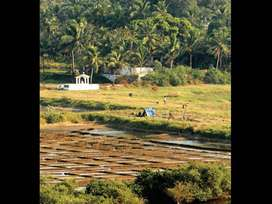 1100 mtr clear title plot in Assagao, North Goa
