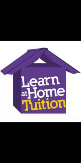 Experience Home Tuitor In Wah Cantt
