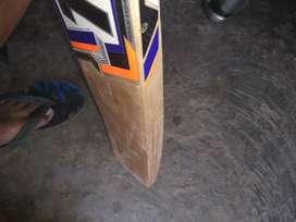 Ton cricket bet