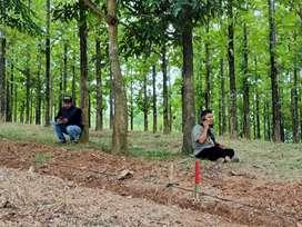 Jual Tanah Kavling Serbaguna di Bogor Timur 30m dari Jalan Propinsi