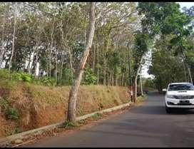 Jual tanah kosong ,kering cocok untuk investasi maupun untuk perumahan