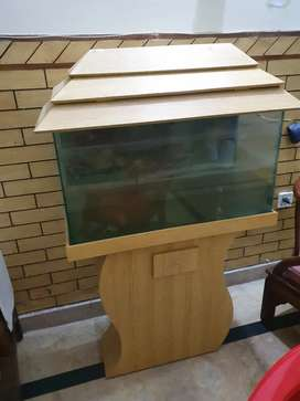Huge aquarium for sale with 4 fishes