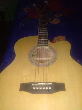 Equilaizer acoustic guitar
