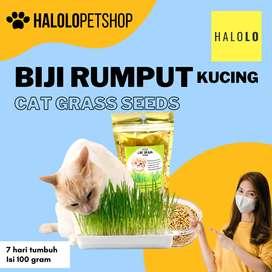 Biji Rumput Kucing Cat Grass Seeds isi 100 gram
