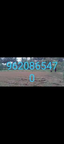 1 acre agriculture land for sale in Hunsanahalli