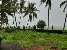 2 plot 227& 247 sq meter in cansaulim South Goa field view title clear