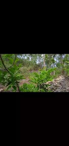 Tanah teras iring  untuk investasi masa depan