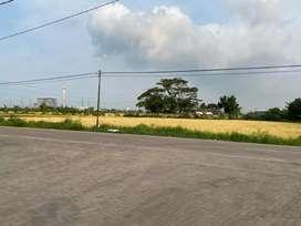 Tanah 17 Hektar di Kawasan Industri Cilegon, Serang, Banten