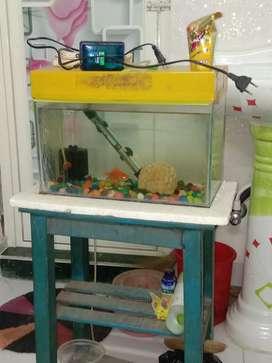 Aquarium selling