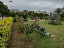 Faisal Hills All Block Sale Purchase Contact me