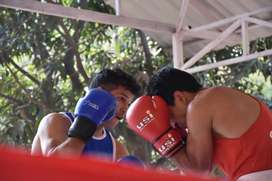 Personal Boxing training professional and amateur...