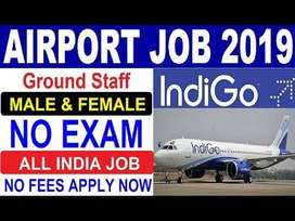 indigo Airlines Hiring for staff on roll vacancy for full time job Cal