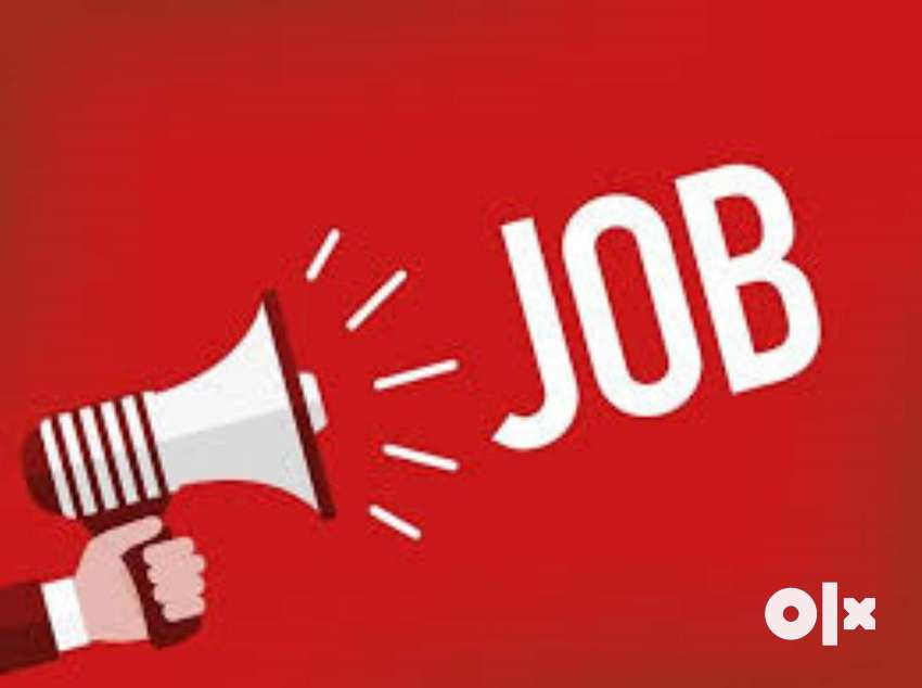 Immediate job opening for Sales executive - no fees 0