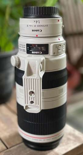 Canon EF 100-400L II lens