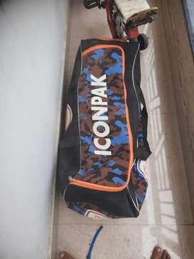cricket kit ( all equipment left hand batsman ) free one bat