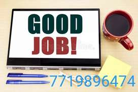 24×7 phone in your hand offline data entry work from home
