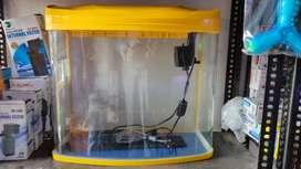 Yellow Aquarium