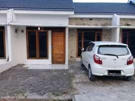 Rumah Disewakan jalan Petunia-Medan