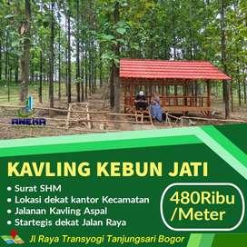 Dijual Murah Kavling Siap Bangun Bonus Pohon Jati Gratis Surat2