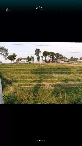 Dijual segera tanah pinggir jalan utama Pacet - Mojokerto