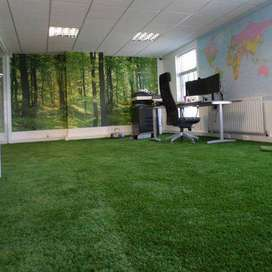 Fake Grass in Pakistan