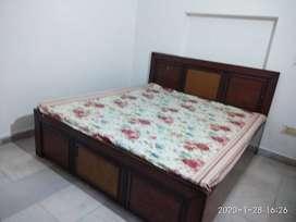 Fully furnished 1room bath girls single sector 17 pkl rent 6500/-
