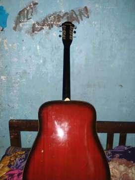 Hobner rare guitar