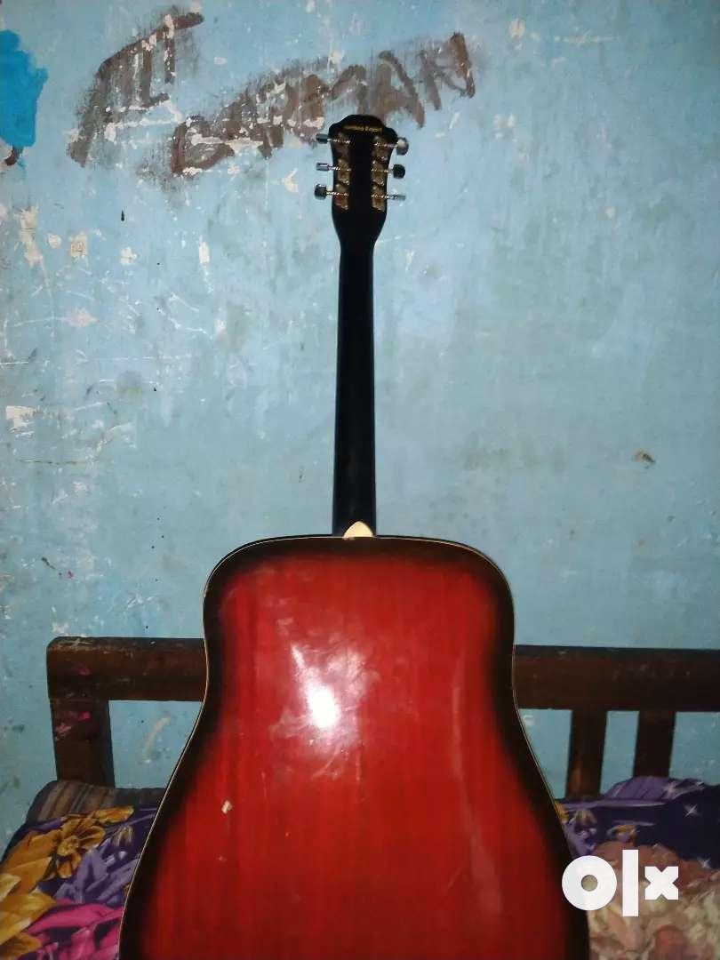 Hobner rare guitar 0