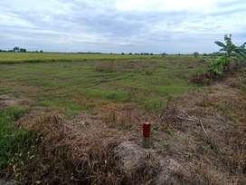 Di jual tanah murah lokasi babulu penajam