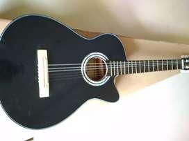 Gitar kapok pemula
