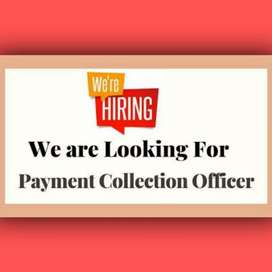Looking for collection executive/collection officer