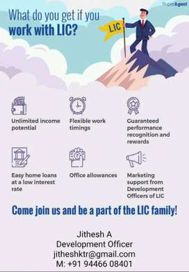 LIC adviser (Part time job) .