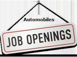 Job requirements in automobiles company