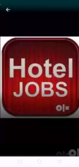 Waiter job in hotels