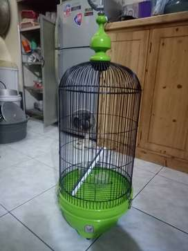 Kandang jati SAZIME Lovebird/Love Bird