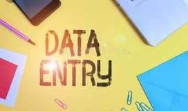 Data Entry (hand written)